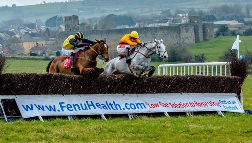 Fenu Health - A thriving, multi-award winning equine health business with a worldwide customer base founded by the Madden sisters at Loreto College, Dublin.