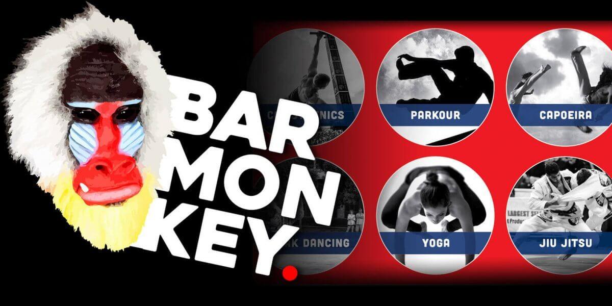 Bar Monkey Festival