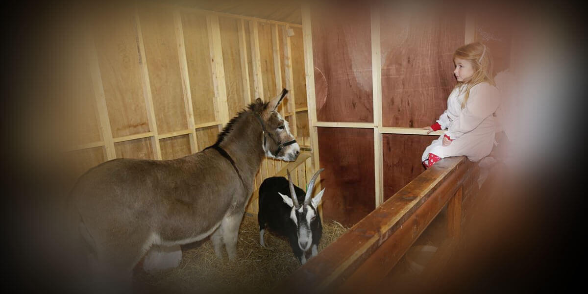 Live Animal Crib at the Mansion House