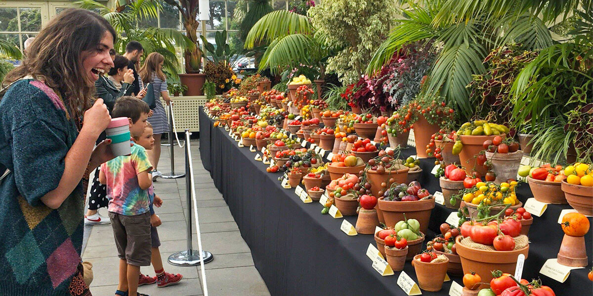 Totally Terrific Tomato Festival